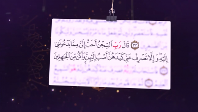 صورة فلاش (بصائر قرآنية  (الحلقة رقم (1) )