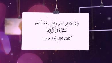 صورة فلاش (بصائر قرآنية (الحلقة رقم (7) )