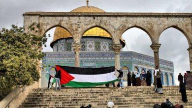 صورة دعوات فلسطينية للزحف نحو القدس والمسجد الأقصى الثلاثاء